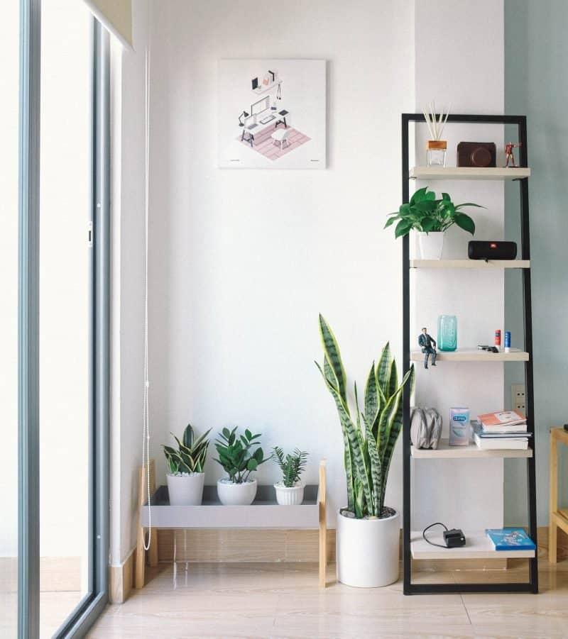 minimalism lifestyle